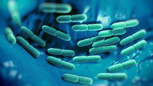 tejsavbakterium-antalvali